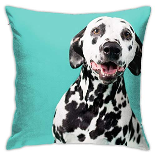 ghjkuyt412 Beautiful Dalmation Decorative Throw Pillow Cover Invisible Zipper Closure Cushion Case for Home Sofa Bedroom Ca.