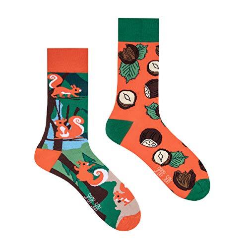 Spox Sox Casual Unisex - mehrfarbige, bunte Socken für Individualisten, Gr. 40-43, Eichhörnchen und Haselnüsse