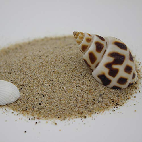 JKGHK Decorative Pebbles Crystal Quartz Pieces Irregular Shaped Stones Fish Turtle Tank/Vase Fillers/Air Plants/Succulent Plants Decor (About 750 Gram),H