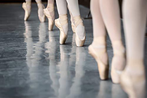 Papel pintado fotográfico para pared, diseño de pies de bailarina Bolshoi, teatro, M112, fieltro, para salón, dormitorio, oficina, pasillo, habitación infantil, 450 x 290 cm (ancho x alto)
