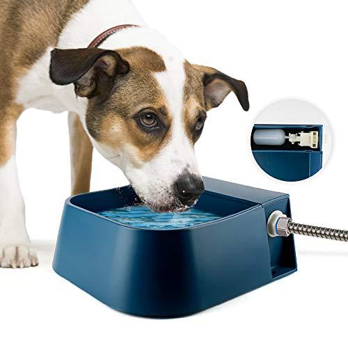 Namsan Bebedero flotante para mascotas automático para perros, gatos, gallinas, patos, caballos, ovejas