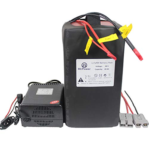 48V 20AH Ebike Battery,Lithium LiFePO4 Battery Pack with 5A Charger,50A BMS for 500W 750W 1000W 1500W Motor