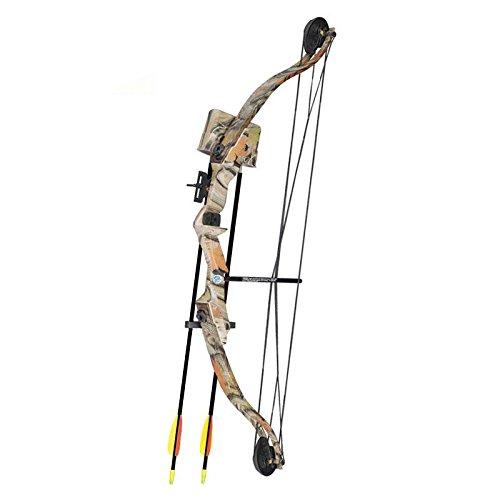 "SET: Compoundbogen Hawk® 31 \"" (79 cm) Autumn Camo 20 lbs Cable Wire RH - Kinderbogen / Jugendbogen"