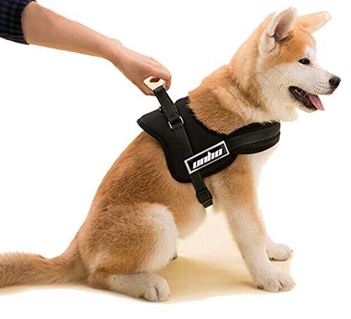 Malayas@Hundegeschirr Brustgeschirr Einstellbarer Hund Gurt sicher Kontrolle Körper mit gutem Komfort Gepolsterte Padded bequem Hunde Leine aus Nylon 5 Größen XS S M L XL