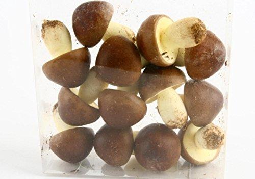 Künstliche Deko Pilze mit brauner Kappe. 4cm x 5cm. 12 Stück