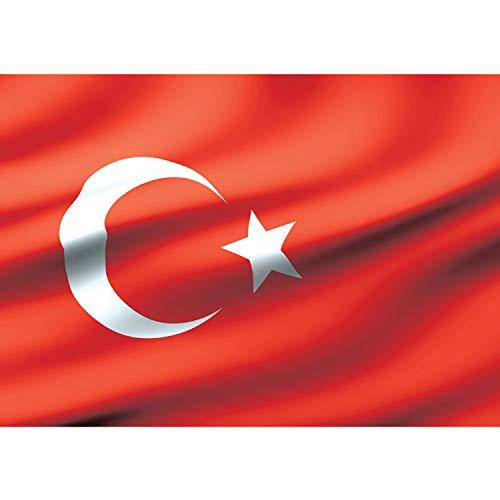 Vlies Fototapete PREMIUM PLUS Wand Foto Tapete Wand Bild Vliestapete - Flagge Fahne Türkei Mond Stern - no. 2310, Größe:254x184cm Blueback Papier