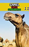 Camel Facts: Camels Fact Books For Kids Series For Girls or Boys Ages 4-8 - Animal Fun Facts Book 11 (English Edition)