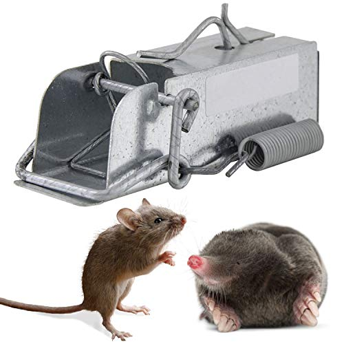 Outdoor Rodent Trap