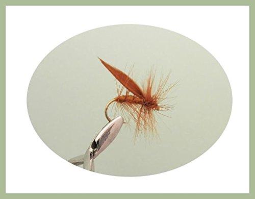 Sedge Trout Fliegen, 6Pack braun Sedge, Größe 10, für Fliegenfischen