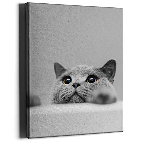 PKONE Cat Canvas Framed Wall Art Decor Cute Animal Painting Modern Home Artwork Print for Bathroom Bedroom Living Room Office Decoration 12x16 Inches