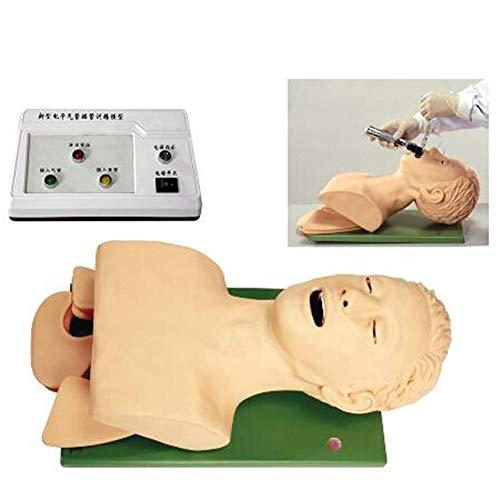 SHUAI Elektronisch Erwachsenen Intubationspuppe Unterrichtsmodell Luftweg Management Trainer Tracheal Intubation Trainingssimulator Modell Wissenschaftslabor