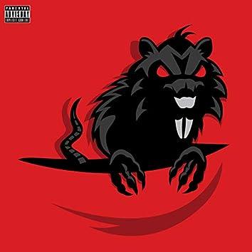 Flip the Rat