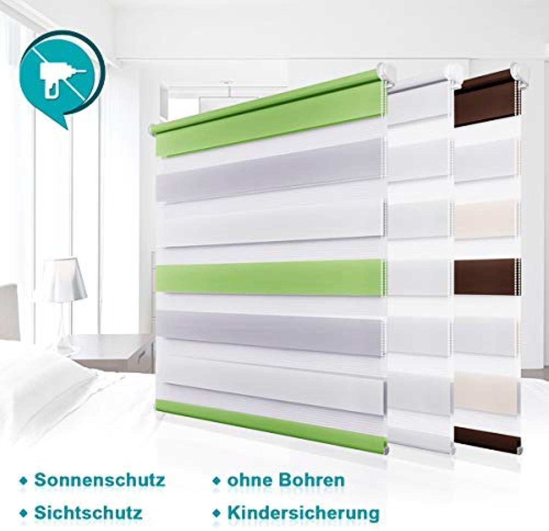 Homland Doppelrollo Klemmfix Duo Rollo Rollo Rollo ohne Bohren Easyfix Seitenzugrollo 110x230cm (BxH) Weiß lichtdurchlässig und verdunkelung Wand- und Deckenmontage für Fenster & Türen B07H987S7K b45e58