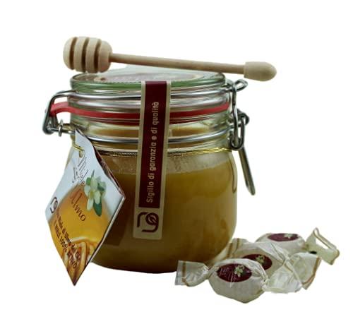Miele di Ulmo (EUCRYPHIA CORDIFOLIA), 600 grammi