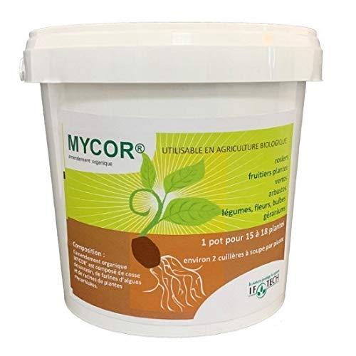 Mycorhizes en poudre Pot de 700g / 2.3L