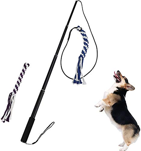 Cuerda con polo para tirar, juguete para perro, cuerda de mezcla de algodón trenzado, juguete interactivo para tirar, perseguir, morder, entrenar, de Ang