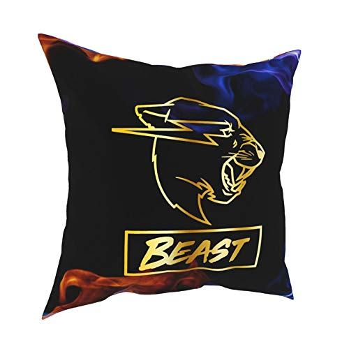 Ynjgqeo Mr Beast Throw Pillow Covers for Sofa Couch Pillowcase Bedroom Car Home Soft Travel Square Gifts 18' X18