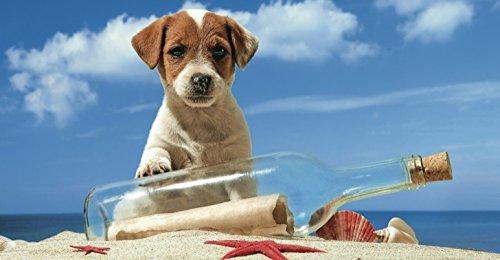 Puzzlekarte Glückwunschkarte aus Puzzleteilen Hund mit Flaschenpost ohne Aufdruck