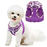PUPTECK Checkered Frills Soft Mesh Dog Vest Harness Puppy Padded Pet Harnesses for Cat Small Dogs (S: Chest 12-12.6', Neck 9.8', Purple)