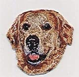 VirVenture 2' x 2 1/8' Golden Retriever Dog Breed Head Portrait Embroidery Patch Great for Hats, Backpacks, and Jackets.