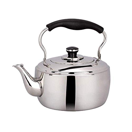 3L Flat Bottom Stovetopmodern Whistling Kettles,304 Stainless Steel Tea Pot,Anti-scalding Handle,Induction Cooktops,Gas Stove (Color : Stainless Steel)