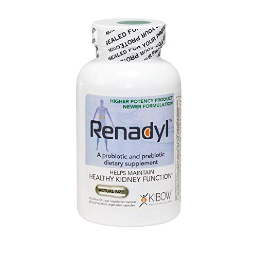 Renadyl All-Natural Probiotic Supplement for Kidney Health, Kidney Support, Kidney Cleanse, Kidney Restore - Vegetarian, Non-GMO, Sugar-Free (1-Month Supply) by Kibow Biotech