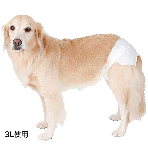 ペティオ『zuttone(ずっとね)老犬介護用紙おむつS』