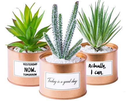 Odezza 3er Set künstliche Pflanzen Kaktus grün im Blumentopf Rosegold |10 mal 16 cm groß | Füllung kleine Steine weiß | 3 Stück Mini Deko Sukkulenten künstlich im Topf | Kunstblumen Kunstpflanze