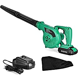 10 Best Cordless Electric Leaf Blowers