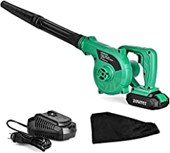 Cordless Leaf Blower - 20V 2.0 Ah Lithium Battery 2in1 Sweeper / Vacuum for Blowing Leaf, Clearing Dust & Small Trash,Car, Computer Host, Hard to Clean Corner