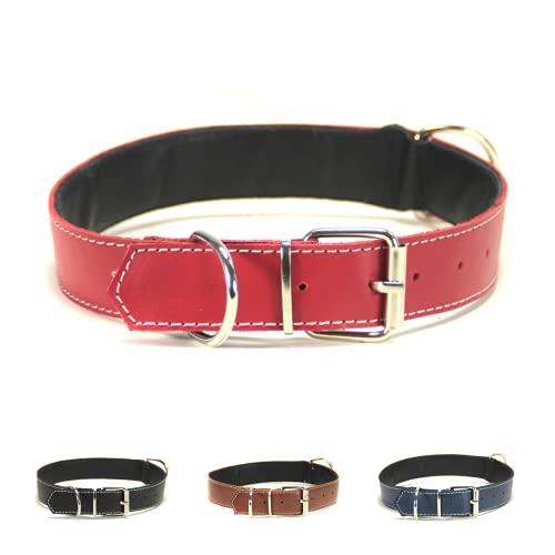 Collar para Perro de Piel, Perros pequeños, medianos y Grandes, Ancho y Resistente, Collares en Color marrón, Azul Marino, Negro y Rojo (M: Ajustable 27 - 37 CM, Ancho 2 CM, Rojo)