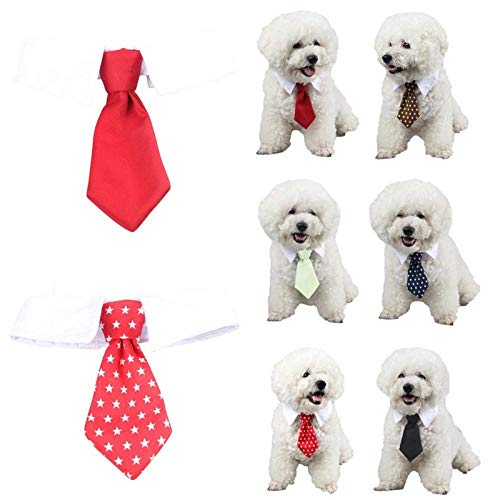 COOINS-LJXL Pet Simple y Fashiono Disfraz Decorativo para Perros ...