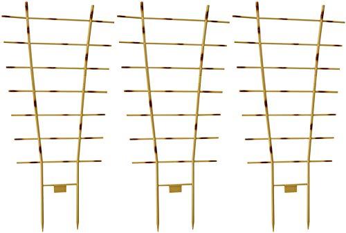 Novatool 3X Pflanzengitter Bambus I 77 x...