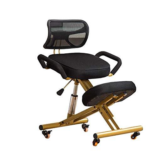 ROMA LT Sedia per Postura positiva, Sedia per Computer/Sedia da Equitazione/Sedia Vita Seduta correttiva/Sedia da Scrittura/Sedile con Schienale ergonomico /,Nero
