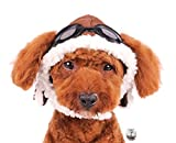 Charmed Aviator Pilot Hat with Goggles for Dogs in Sizes XS Thru XL (Large, Brown)