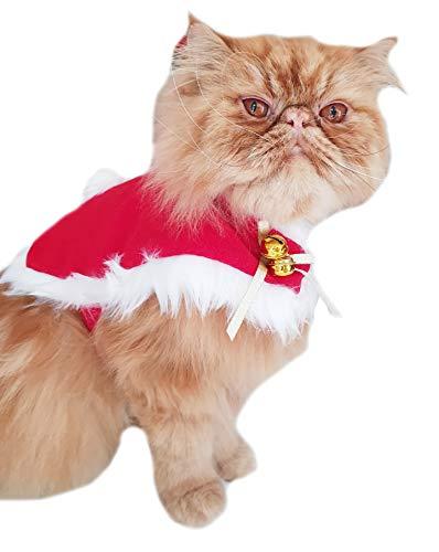 Glamour Girlz Abrigo de Papá Noel con pompón, diseño de perro pequeño, talla grande, color rojo