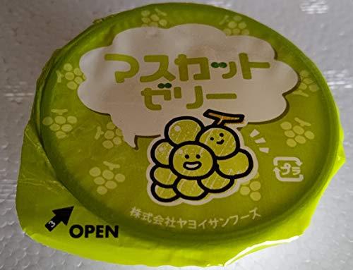 ヤヨイ マスカット ゼリー 40g×40個 業務用 冷凍