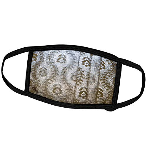 3dRose Danita Delimont - Textile - USA, Arkansas, Hot Springs. Lace Curtain at Fordyce Bath House. - Face Masks (fm_229814_2)
