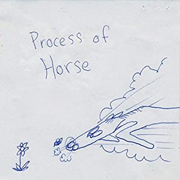 Process Of Horse
