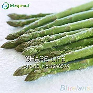 50pcs / pack Asperges Seeds Heirloom Organic Rare Légume vert jardin Graines Très facile Livraison gratuite