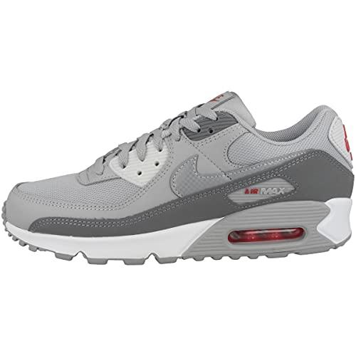 Nike Zapatillas para hombre Low Air Max 90, Light Smoke Grey Reflect Silver Smoke Grey, 44.5 EU