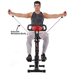 PLENY Upright Stationary Exercise Bike with Arm Exercise Resistance Bands and Phone Holder