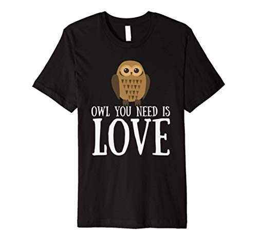 Funny Owl Lover Slogan Pun Gift Owl You Need Is Love Premium T-Shirt