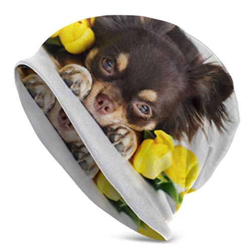 AEMAPE Gorros para hombres y mujeres chihuahua perro tumbado tulipanes amarillos Beanie Cap elástico suave Beanie Cap