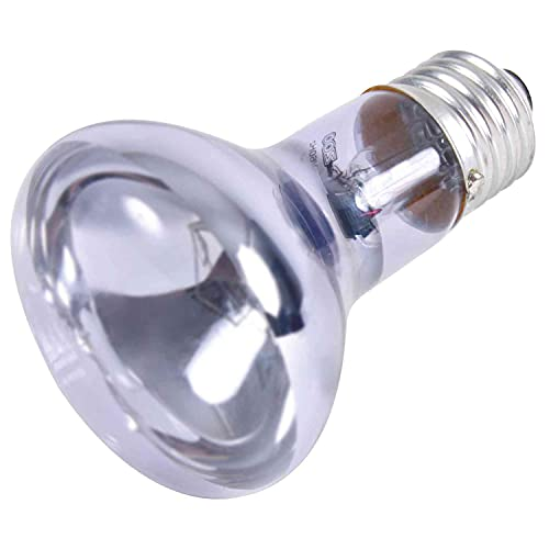 Trixie 76007 Neodymium Wärme-Spotlampe, ø 63 × 100 mm, 75 W