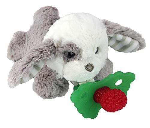 RaZbaby RaZbuddy RaZberry Teether/Pacifier Holder w/Removable Baby Teether Toy  0M  Bpa Free  Puppy
