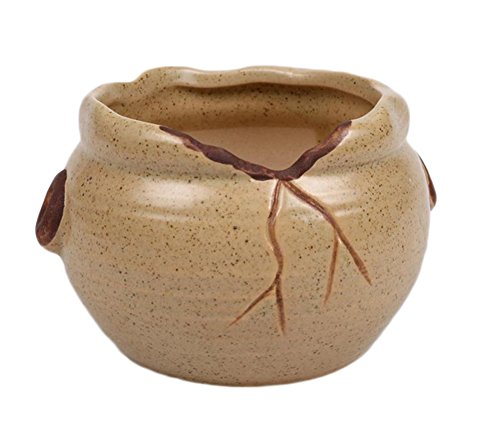 Outflower Mini pots de fleurs créatifs en céramique - Kaki