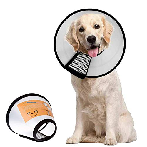 TPMALL Collar Isabelino Gato Perro Collares Salud Cono de Cuello de recuperación para Lesiones Conos de Perro después de la cirugía Suave Pet Embudo Cono 1++