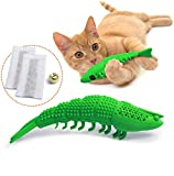 Best Chew Toys For Cats 2020: Reviews & Topicks 14