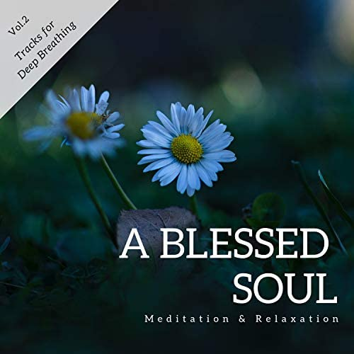 Meditation Guide & Co, New Age Peaceful and Serene Yoga Sounds, Divine Chakras Meditation Ambient Sounds, Buddha Chakras Healing Medtation Music, Ambient 11, Buddha Meditation Healing and Focus Music, Deep Breath Calming Down Buddha Healing Meditation Music & Mindful Mantra Music